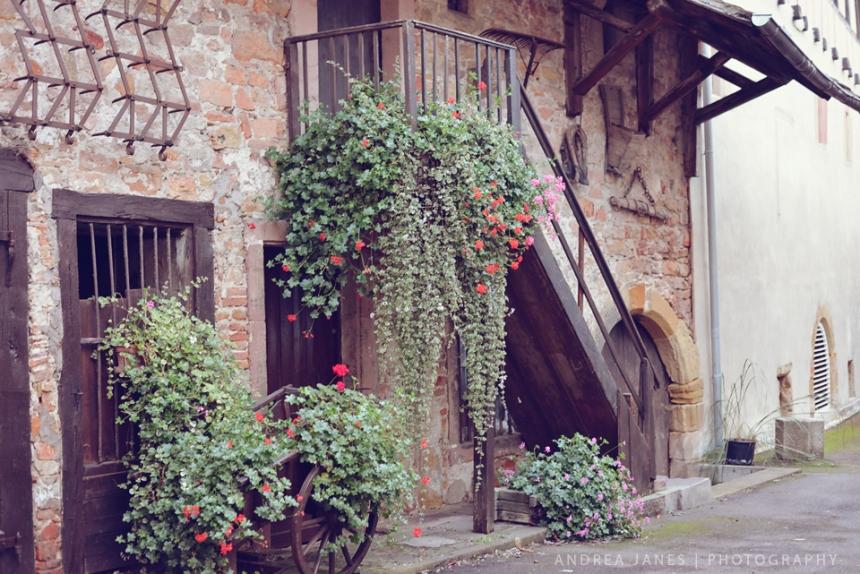 Alsace_10_web