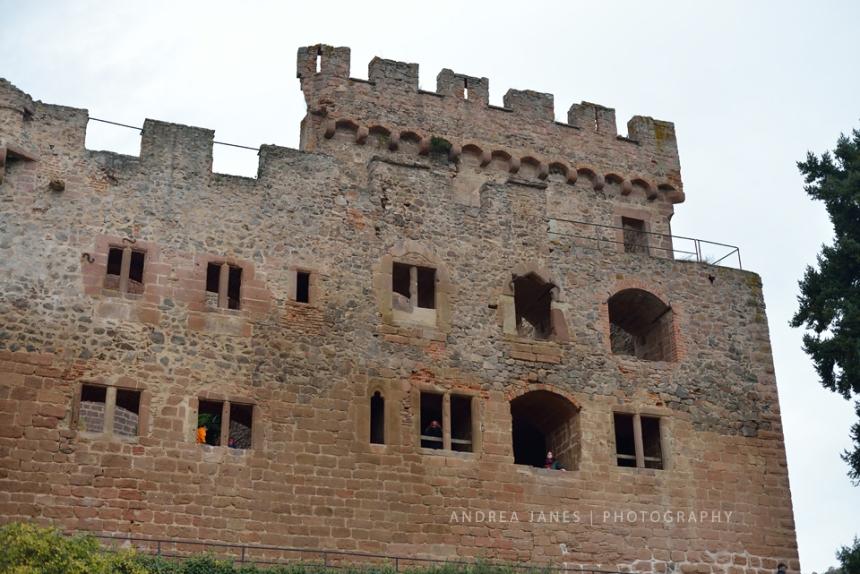 Alsace_30_web
