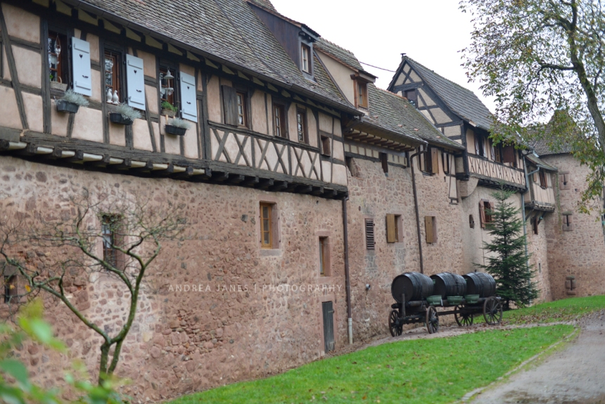 Alsace_49_web
