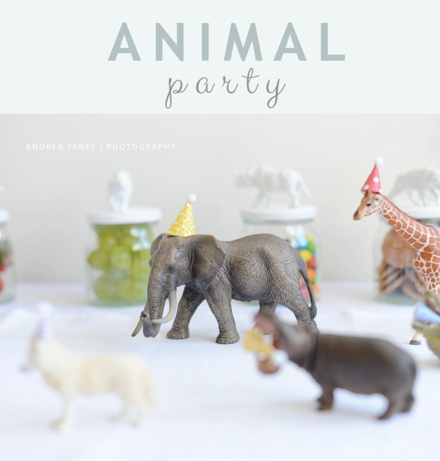 animal_party_AndreaJanes_01