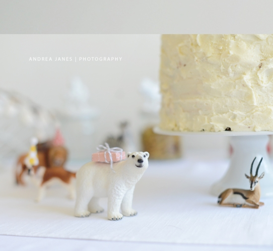animal_party_AndreaJanes_03