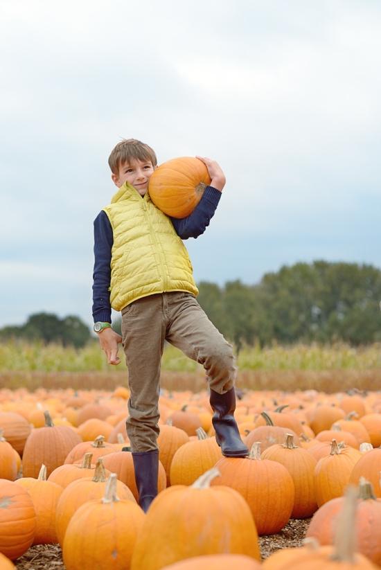 pumpkin-patch_03-copy