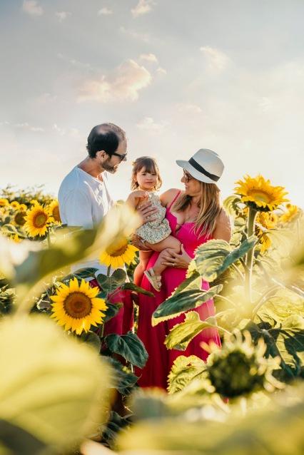 Soso sunflower 4 copy