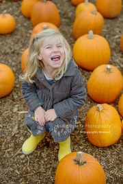 pumpkin-patch_04-copy