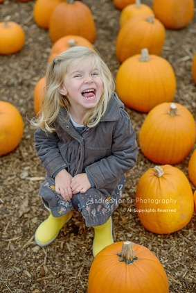 pumpkin-patch_04-copy